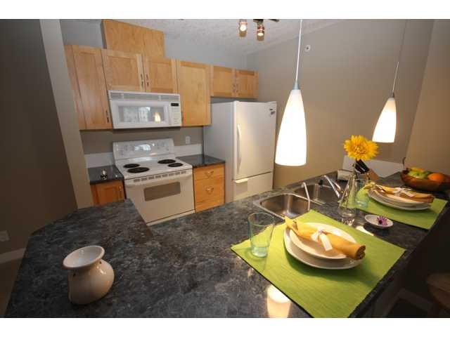 # 302 2440 34 Av Sw - South Calgary Lowrise Apartment for sale, 2 Bedrooms (C3429597) #5